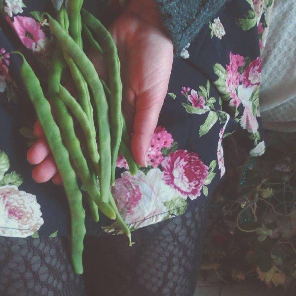 Start Eating Beans Today