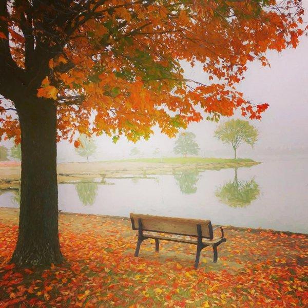 autumn, leaf, orange, tree, painting,