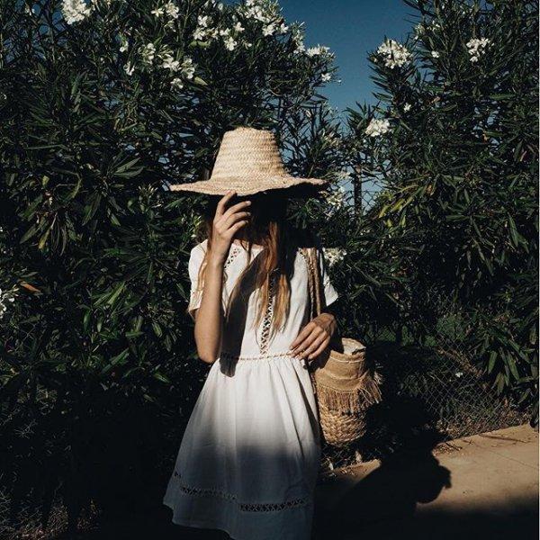 photograph, clothing, image, dress, tree,