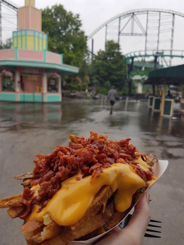dish, food, cuisine, street food, fast food,