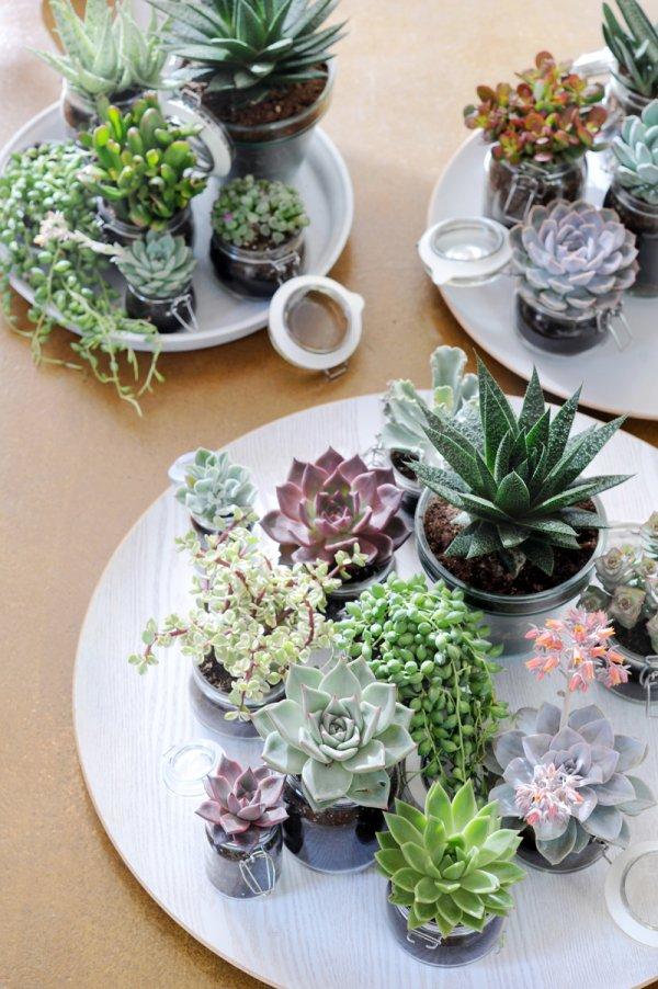 flower arranging,floristry,flower,centrepiece,plant,