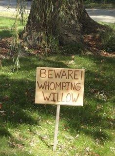 soil,trail,signage,BEWARE,WHOMPTNE,