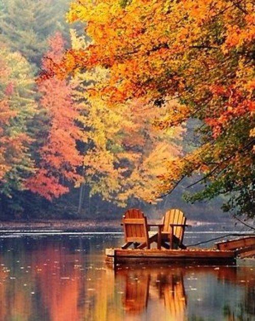 reflection, nature, waterway, autumn, painting,