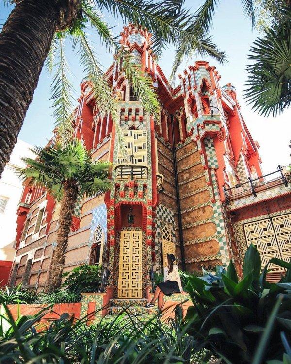 tree, arecales, palm tree, tourist attraction, amusement park,