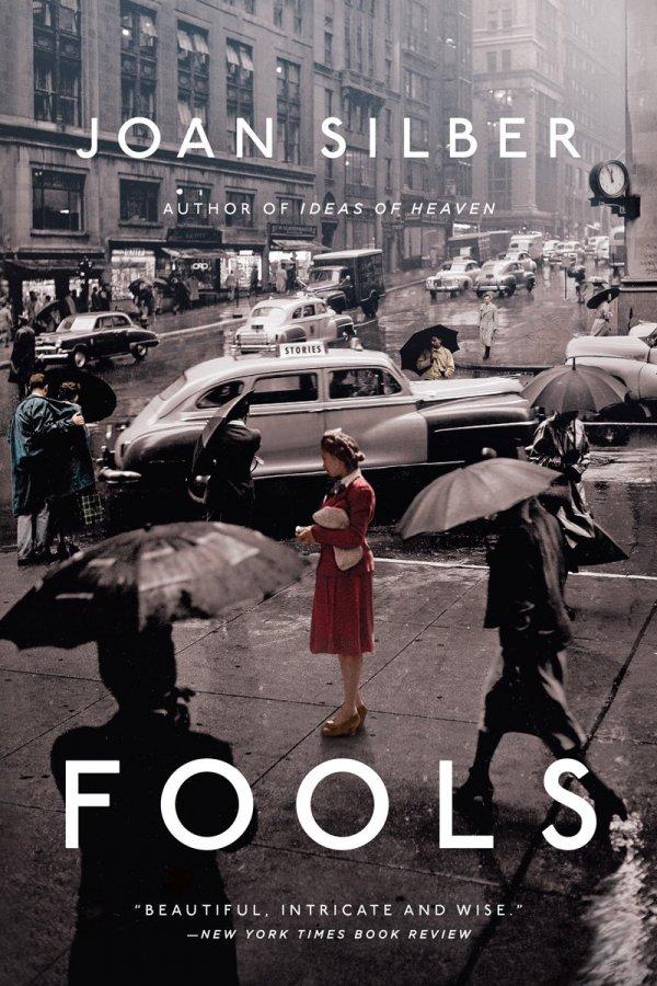 Fools by Joan Silber