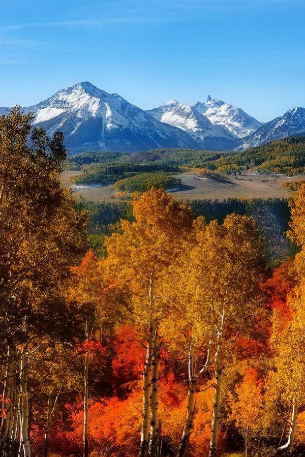 nature, wilderness, mountain, leaf, mountainous landforms,