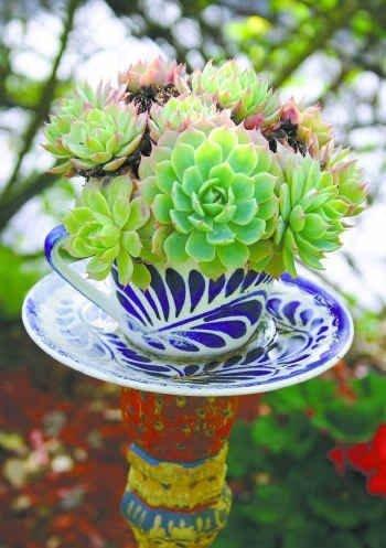 flower,flower arranging,plant,flora,floristry,