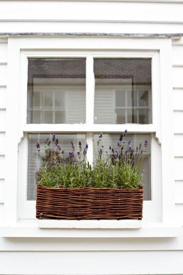 balcony,window,interior design,facade,home,