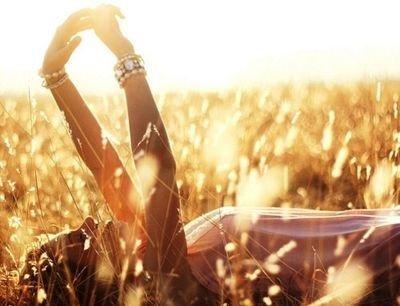 grass family,food,sunlight,crop,drink,