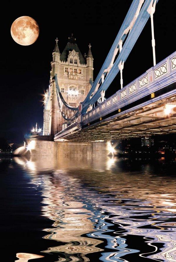 Tower Bridge,reflection,bridge,night,water,