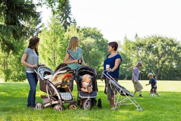 lawn, play, vehicle, cart,
