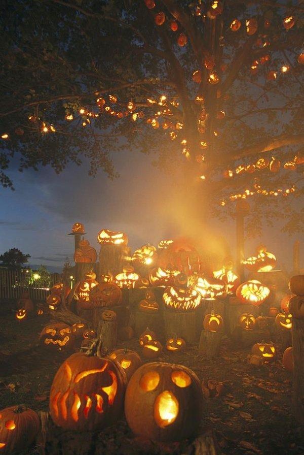 Grinning Lit Jack-o-lanterns