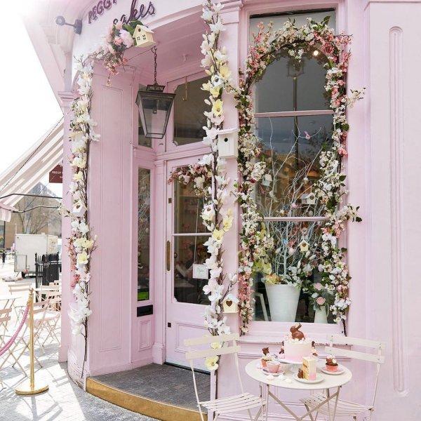 pink, home, window, flower, floristry,