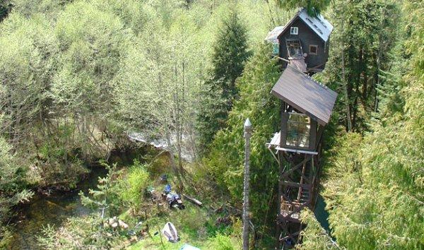 Cedar Creek Treehouse Hotel, Ashford, Washington, USA