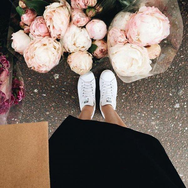 pink, flower, plant, floristry, flower arranging,