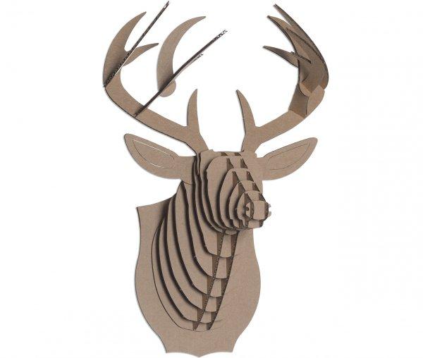 mammal, deer, reindeer, horn, trophy hunting,