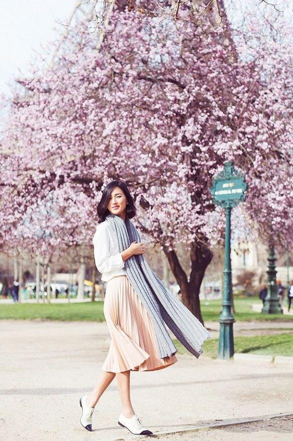 flower,plant,cherry blossom,pink,spring,