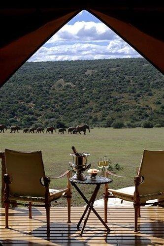 Nairobi's National Park