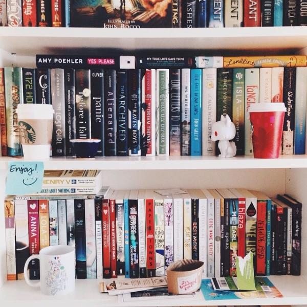 shelving,furniture,room,shelf,bookcase,