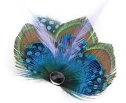 Crystalmood Peacock Feather Hair Clip