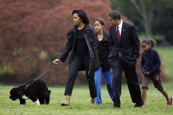 Bo: the Obamas