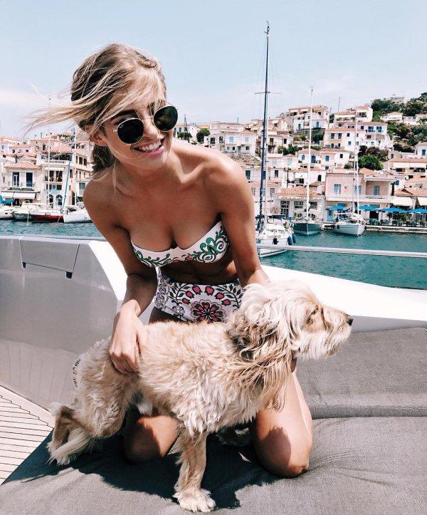 blond, interaction, dog like mammal, dog walking,