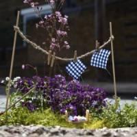 6 Great Guerrilla Gardening Sites ...