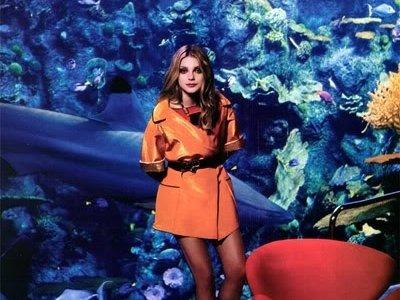 7 Amazing Benefits of Having an Aquarium That You Should Consider ...