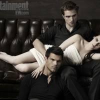 7 Twilight Blogs …