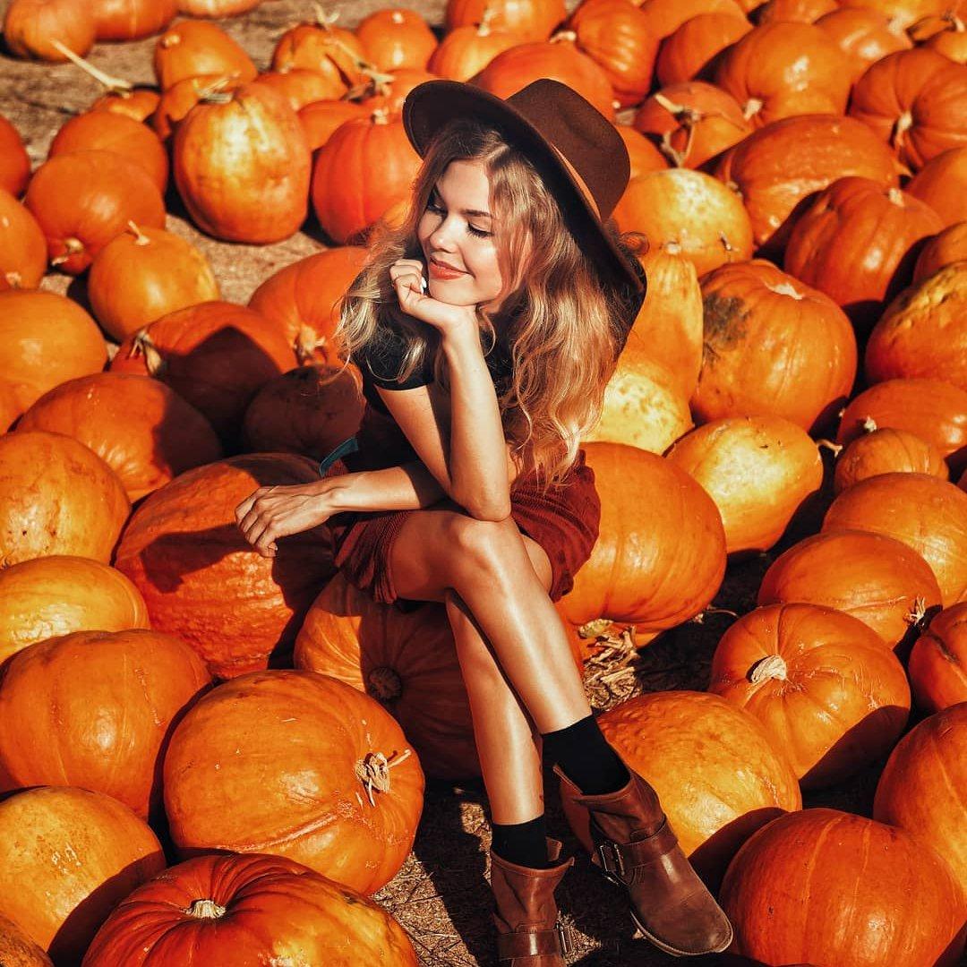 21 Halloween Movies  That Wont  Give You Sleepless  Nights  ...