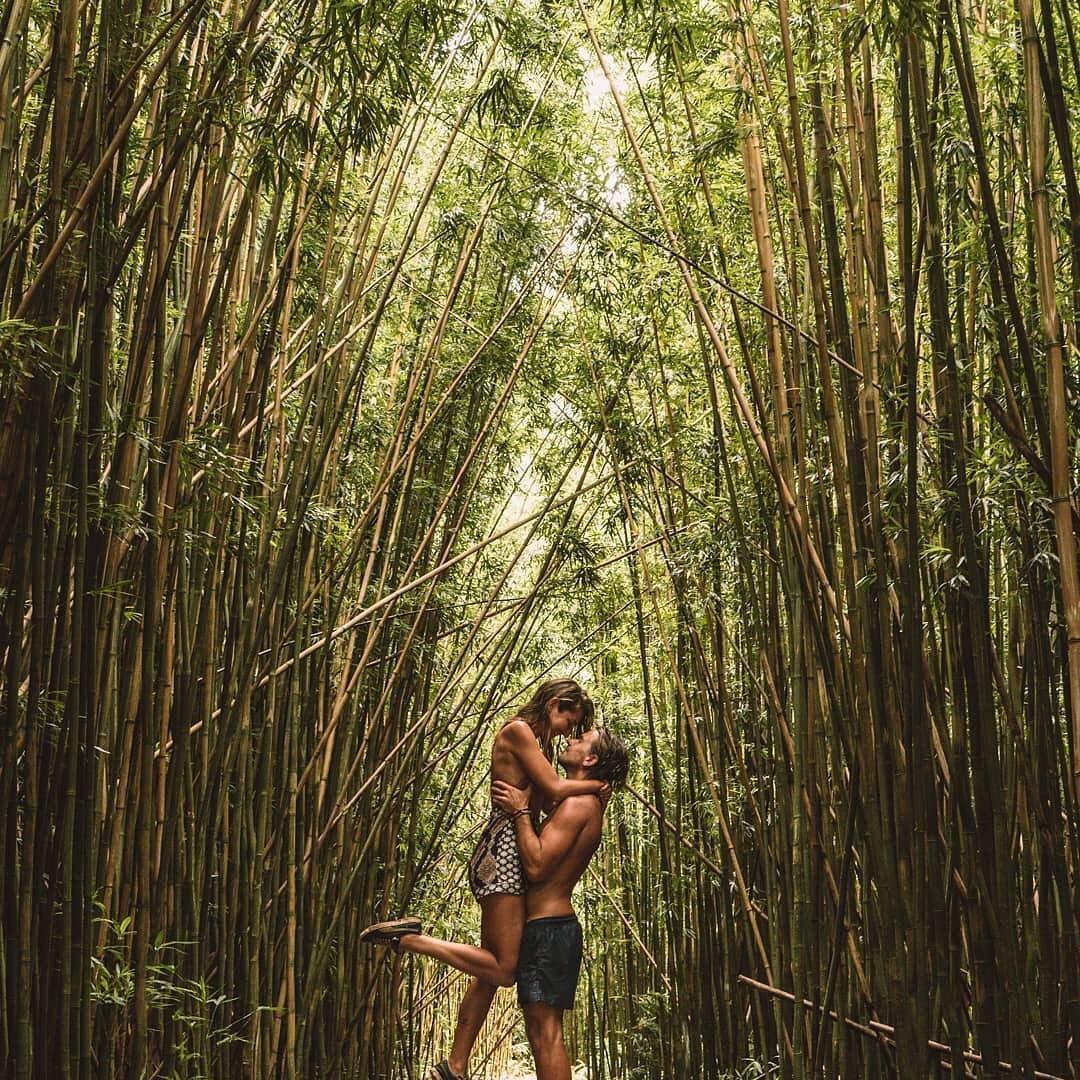 5 Tips on Growing Bamboo
