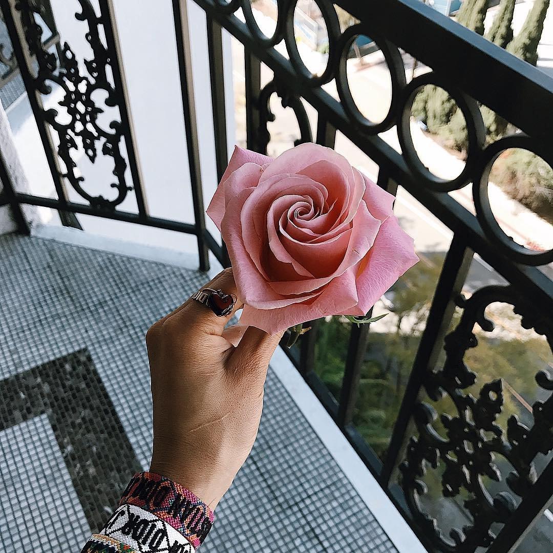 7 Ways to Make Cute Flowers Last Longer ...