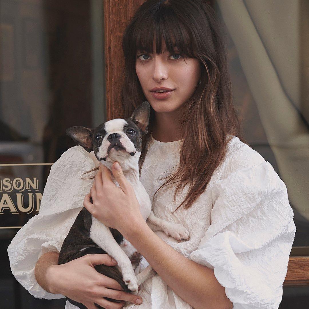 8 Adorable Small Dog Collars to Splurge on ...