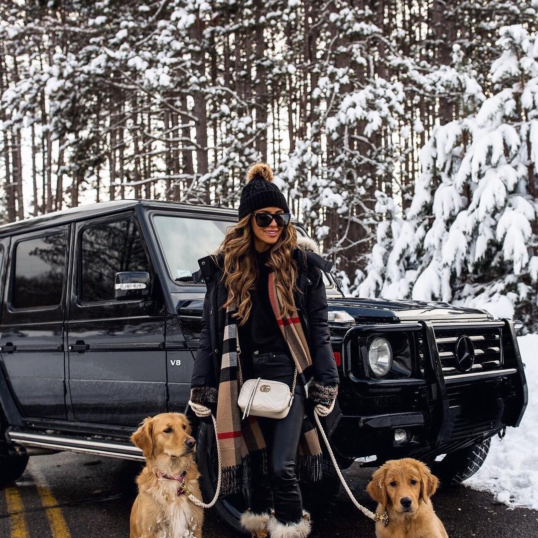 Adopt a Shelter Dog Month ...